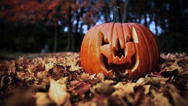 Halloween in Italia: festeggiamenti da brivido tra castelli, acquari e musei